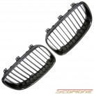 Scopione Carbon Fiber Kidney Grille for BMW 08-13 1 Series - E82 E88 1M